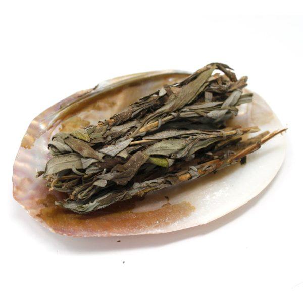 Smudge Stick Shell Dish