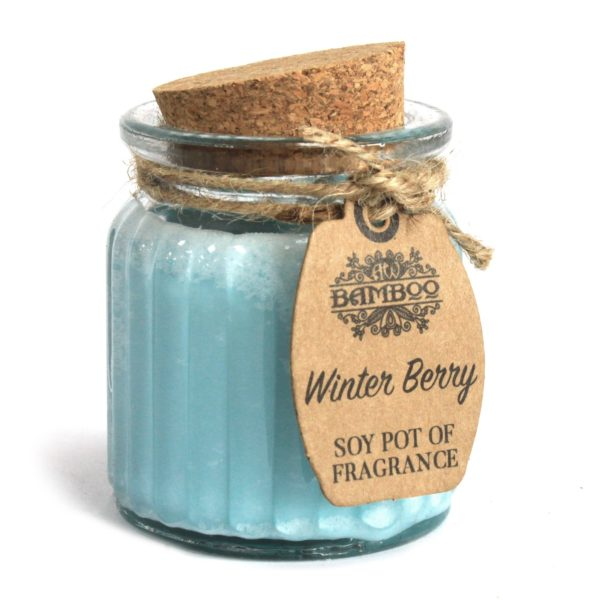 Winter Berry Soy Wax Candle
